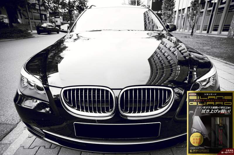 Где купить жидкое стекло для авто Silane Guard